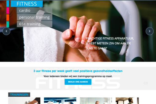 Professional Fitness Website